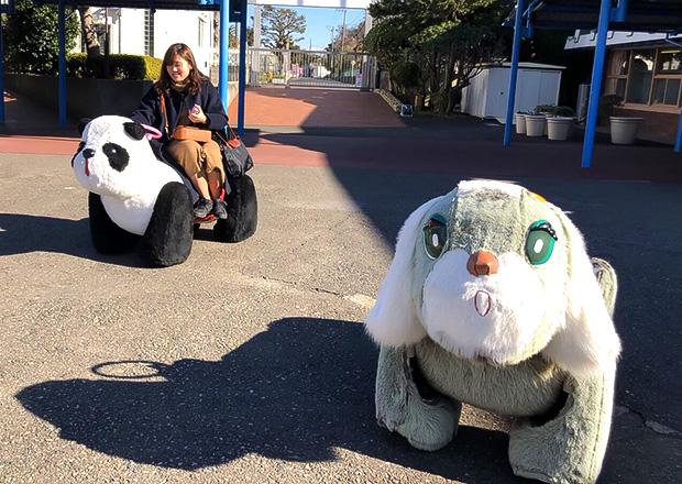 オフショット:神奈川県、油壺マリンパークにて