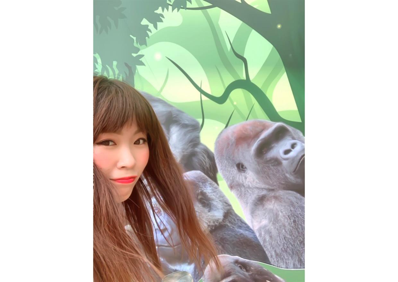 オフショット:動物園、ゴリラの展示パネルにて